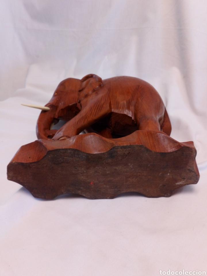 Arte: Elefante tallado en madera - Foto 5 - 181188430