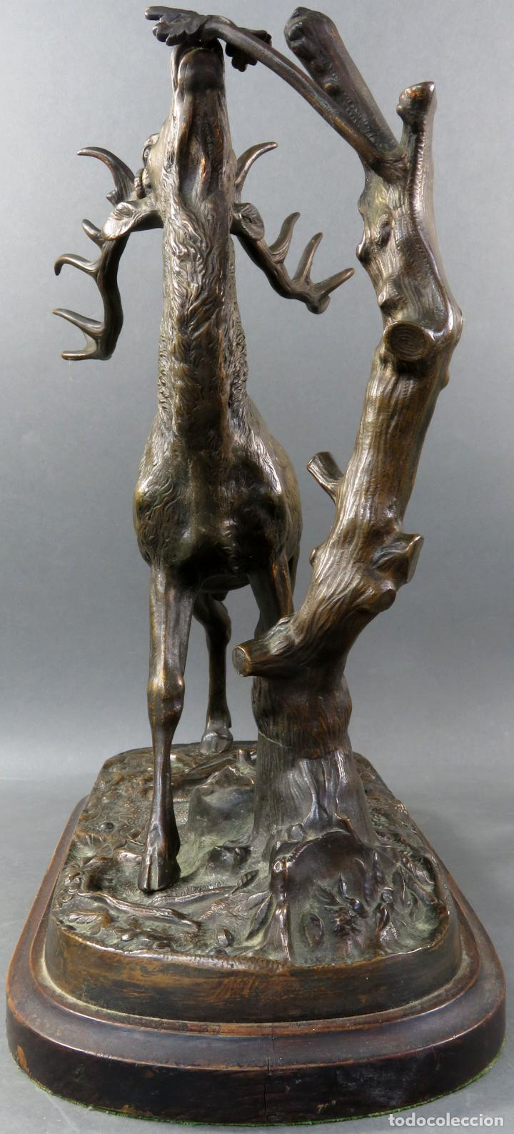 Arte: Escultura en bronce ciervo comiendo de rama de árbol Pierre Jules Mené Francia siglo XIX - Foto 6 - 183915395