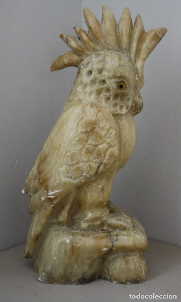 TALLA ESCULTURA DE CACATÚA IGNORO MATERIAL 8100 GR ALGUNAS FALTAS 40 CM ALTURA 19 CM FONDO (Arte - Escultura - Alabastro)