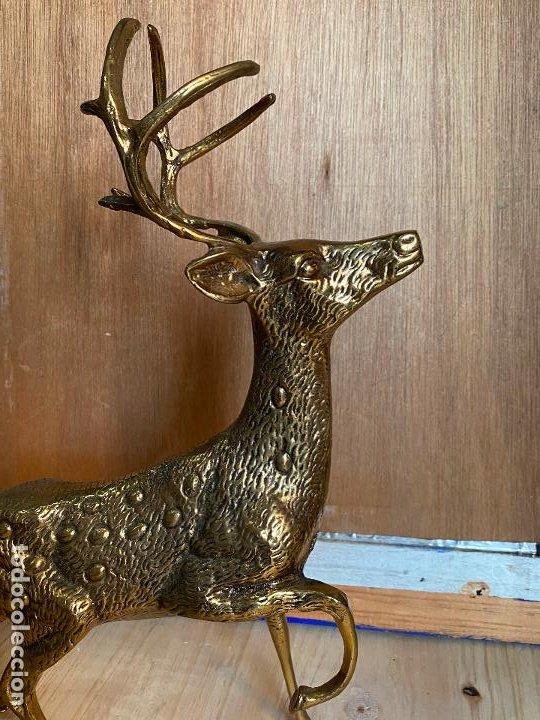 Arte: Preciosa escultura de un ciervo en bronce o laton - 41 x 42 cm - Foto 2 - 194242805