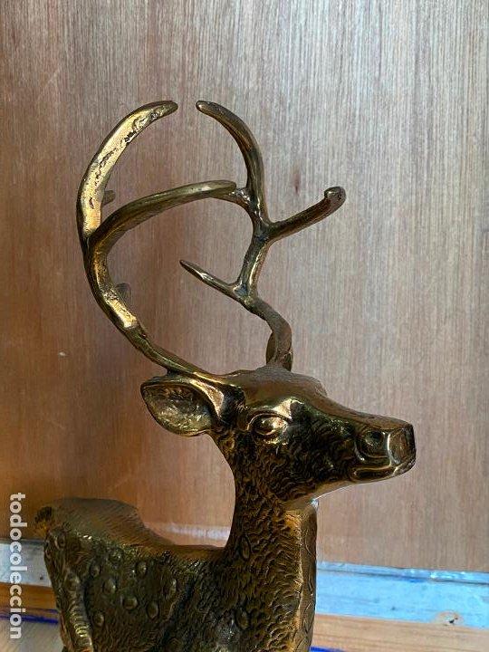 Arte: Preciosa escultura de un ciervo en bronce o laton - 41 x 42 cm - Foto 3 - 194242805