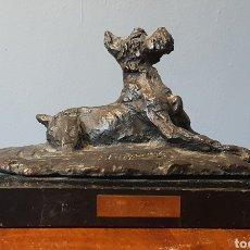 Arte: PAZ FIGARES, PRECIOSA ESCULTURA BRONCE, PERRO, FIRMADA.. Lote 194774391