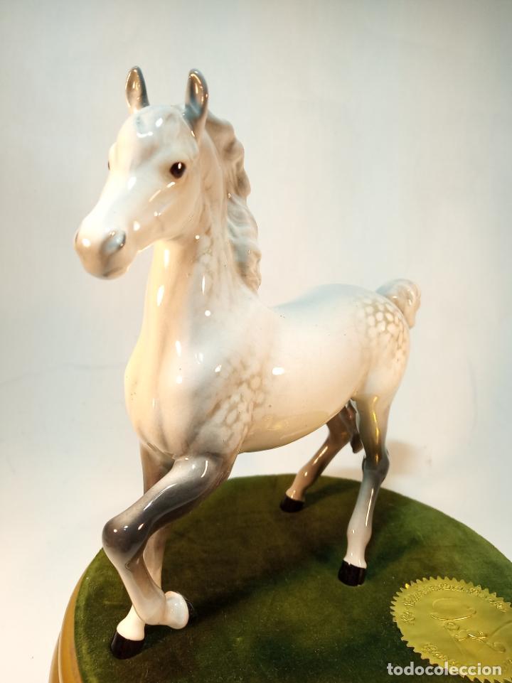 Arte: Precioso caballo blanco en porcelana esmaltada. Beswick England. 17 cm. - Foto 2 - 195223138