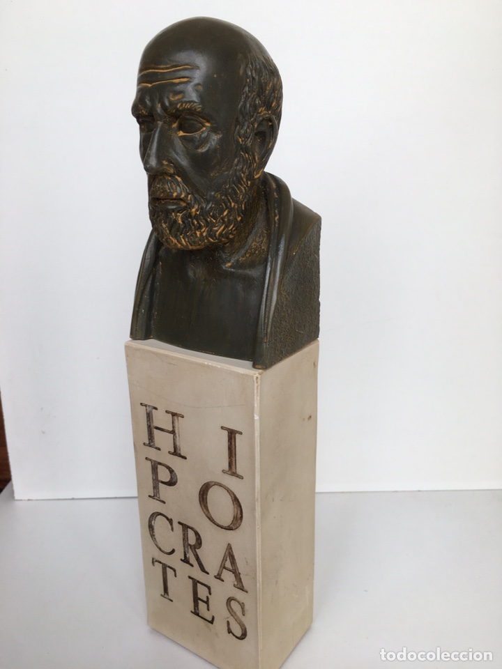 BUSTO DE HIPÓCRATES. LAB. SALVAT (Arte - Escultura - Resina)