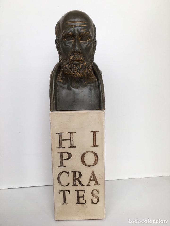 Arte: BUSTO DE HIPÓCRATES. Lab. Salvat - Foto 2 - 195281182