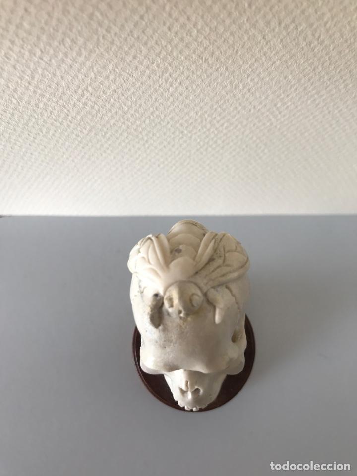 Arte: Memento Morí. Hueso tallado y base torneada de madera. Mitad siglo XIX - Foto 2 - 196845032