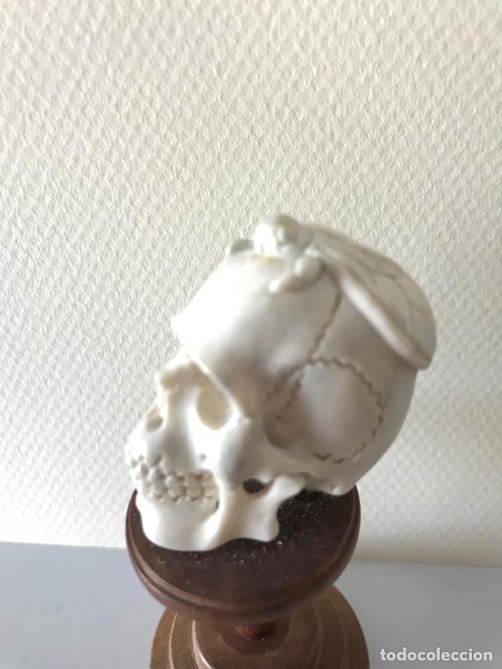 Arte: Memento Morí. Hueso tallado y base torneada de madera. Mitad siglo XIX - Foto 6 - 196845032
