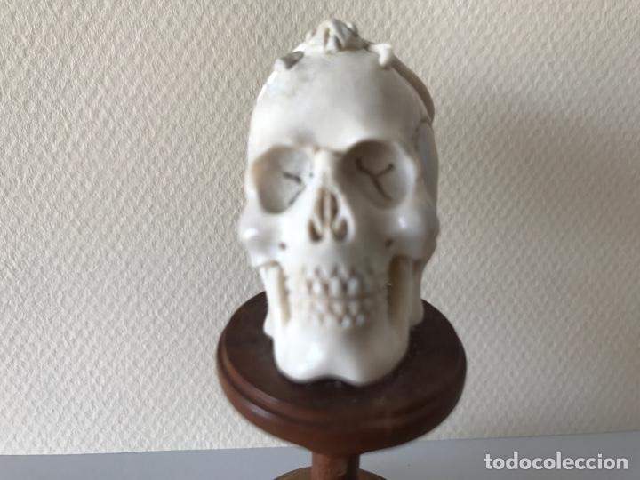 Arte: Memento Morí. Hueso tallado y base torneada de madera. Mitad siglo XIX - Foto 7 - 196845032