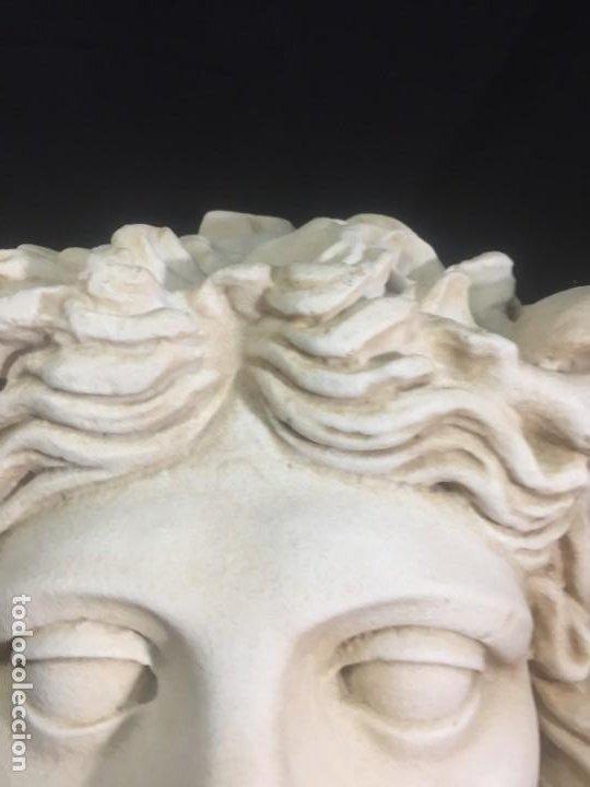 Arte: Escultura figura cabeza de medusa de Rodanini, 40 x 45 cms. en resina alta densidad 9 kgs. - Foto 9 - 205128313