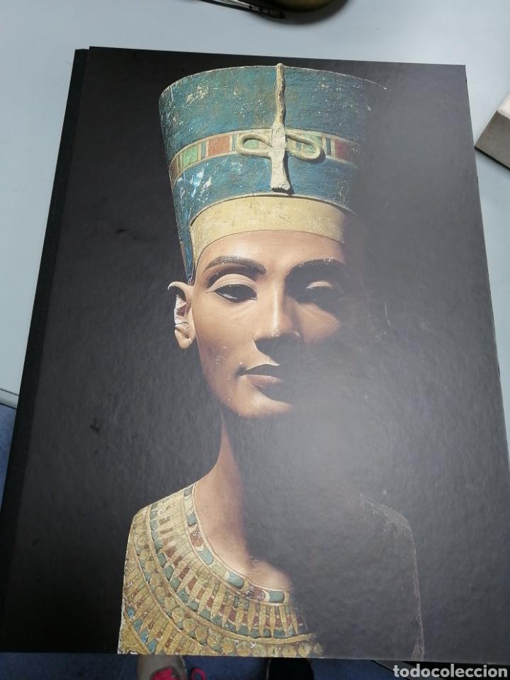 nefertiti busto bronce + libro. 637/998 - Comprar