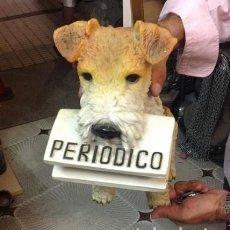 Arte: PERRO PORTA-PERIODICOS. RESINA 37 CM..MUY ORIGINAL.. Lote 209715185