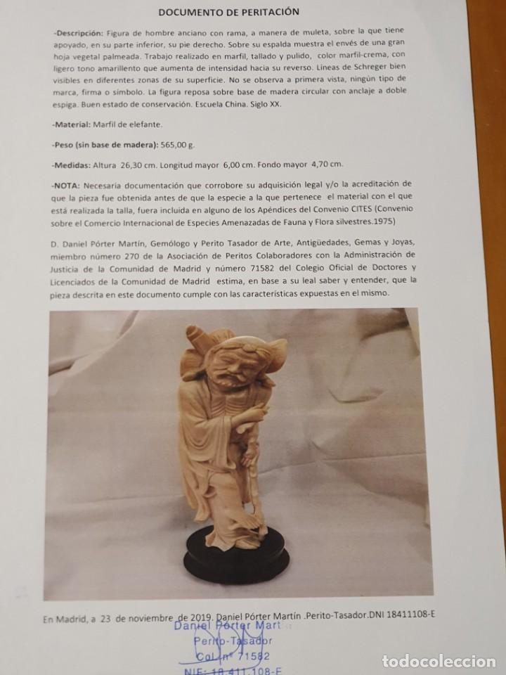 Arte: PAREJA DE FIGURAS EN MARFIL CON CERTIFICADO DE PERITACIÓN - Foto 3 - 213415890