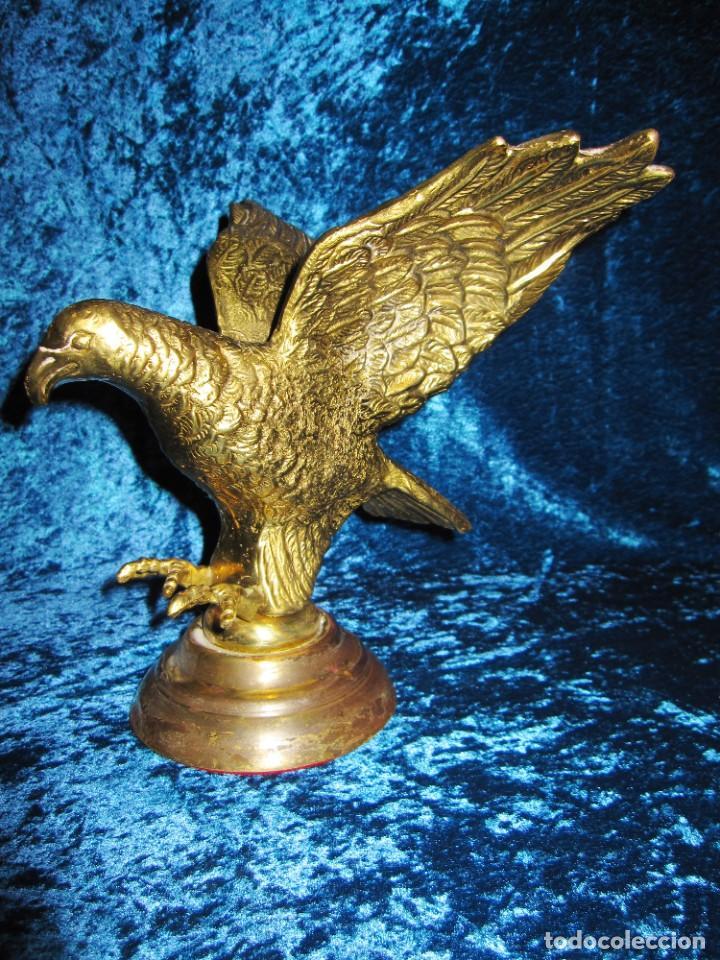Arte: Antigua majestuosa figura escultura águila bronce macizo 3,6 kg primera mitad s XX - Foto 6 - 215681098