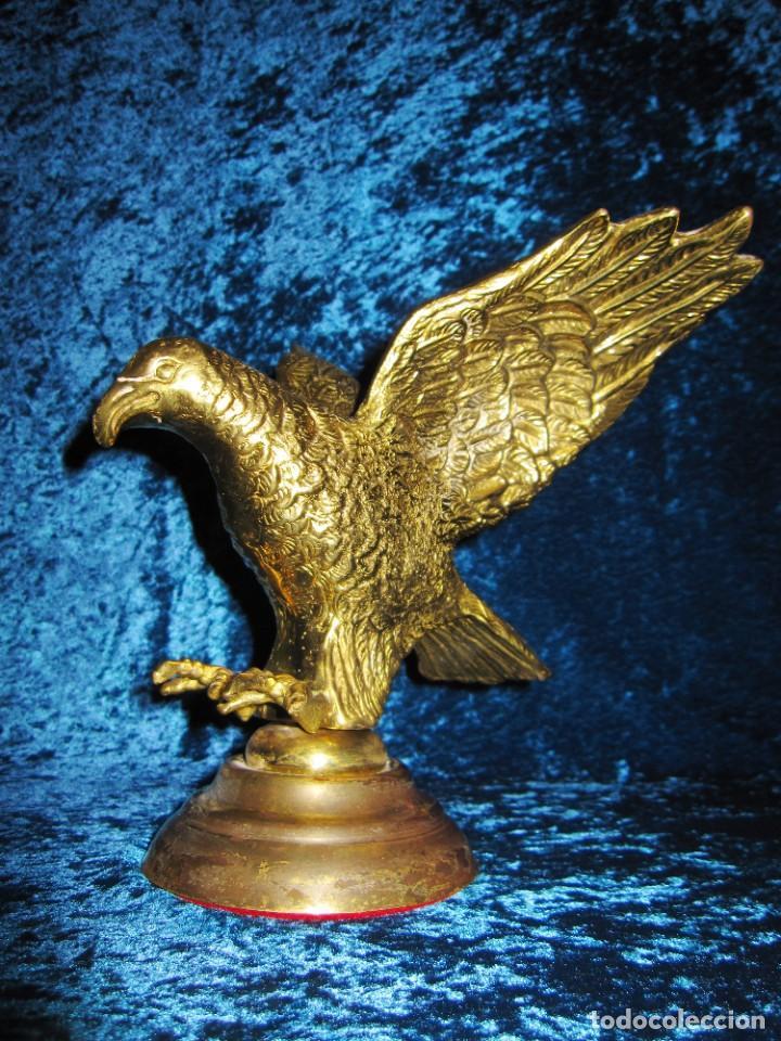 Arte: Antigua majestuosa figura escultura águila bronce macizo 3,6 kg primera mitad s XX - Foto 8 - 215681098