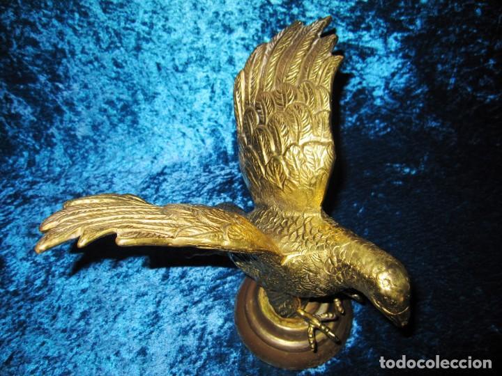 Arte: Antigua majestuosa figura escultura águila bronce macizo 3,6 kg primera mitad s XX - Foto 5 - 215681098