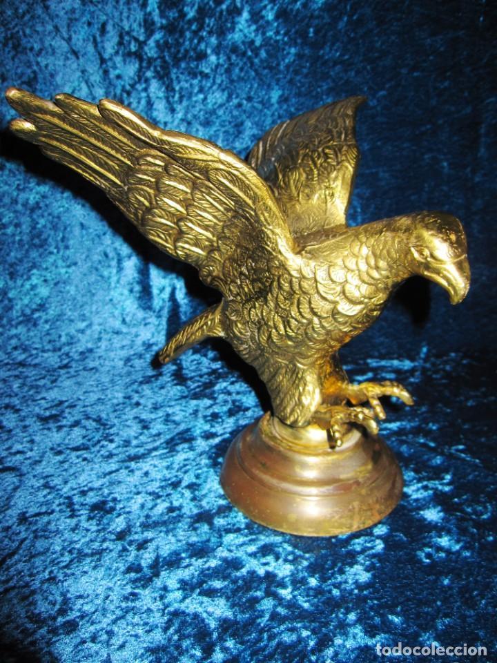 Arte: Antigua majestuosa figura escultura águila bronce macizo 3,6 kg primera mitad s XX - Foto 23 - 215681098