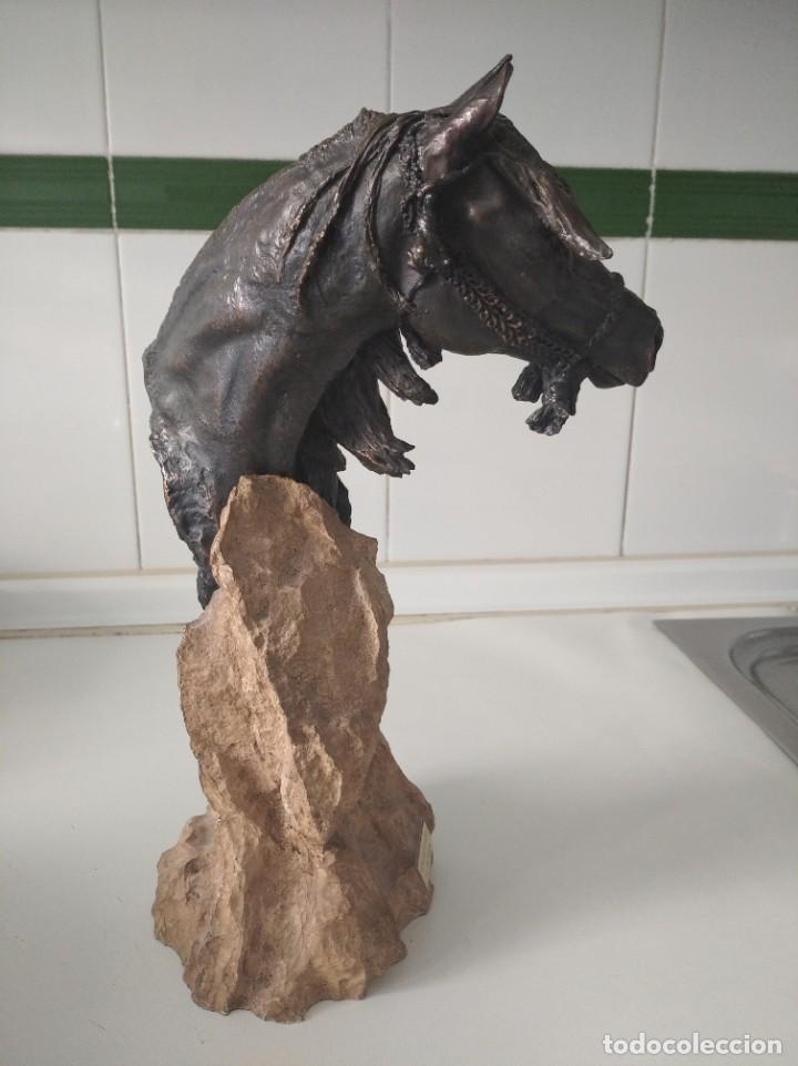 Arte: Escultura resina laminada en bronce, sobre piedra JL casasola cabezade caballo - Foto 4 - 220766106