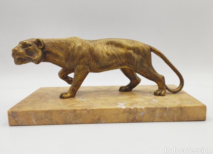 Arte: Escultura tigre en mármol y bronce. Años 30. - Foto 2 - 222121037