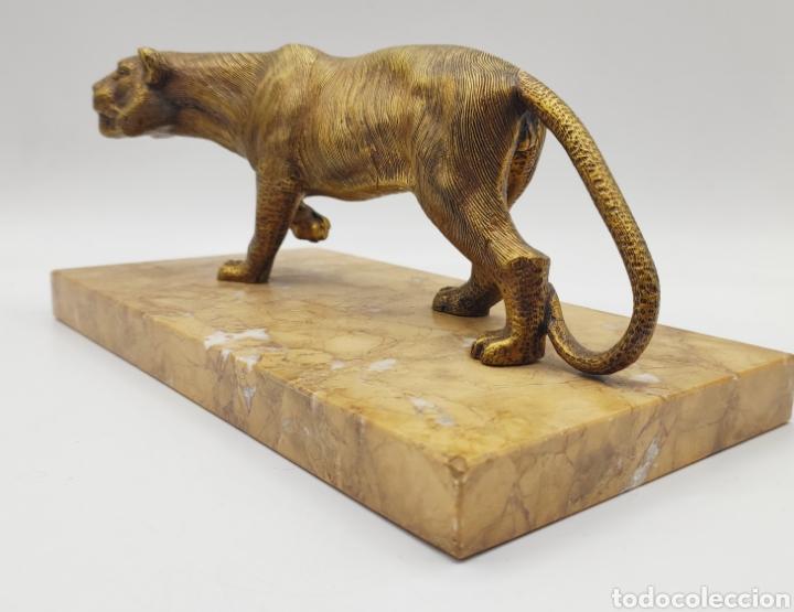 Arte: Escultura tigre en mármol y bronce. Años 30. - Foto 3 - 222121037