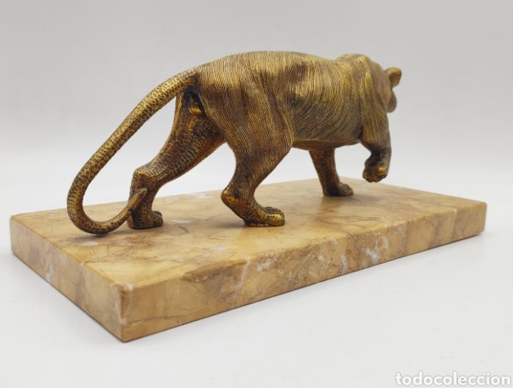 Arte: Escultura tigre en mármol y bronce. Años 30. - Foto 4 - 222121037