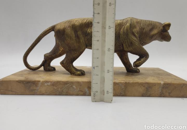 Arte: Escultura tigre en mármol y bronce. Años 30. - Foto 7 - 222121037