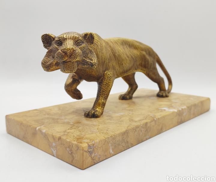 ESCULTURA TIGRE EN MÁRMOL Y BRONCE. AÑOS 30. (Arte - Escultura - Bronce)