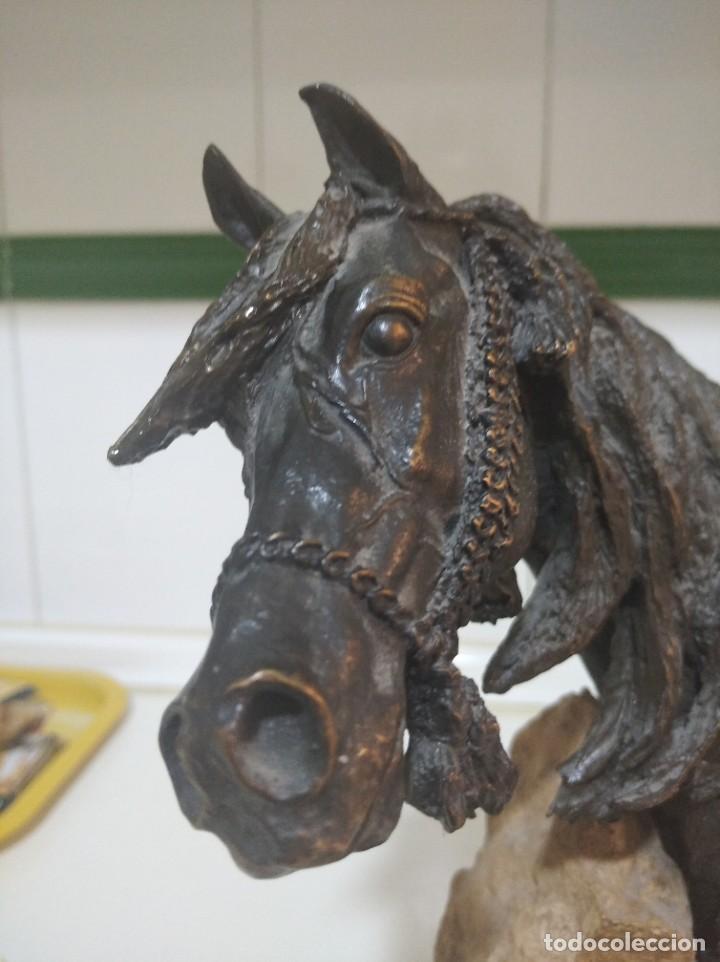 Arte: Escultura resina laminada en bronce, sobre piedra JL casasola cabezade caballo - Foto 11 - 220766106