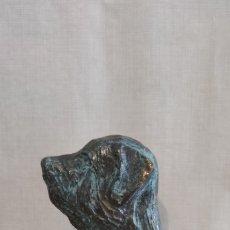 Arte: ESCULTURA CABEZA DE MASTÍN ESPAÑOL EN BRONCE. FIRMADA.. Lote 237479455