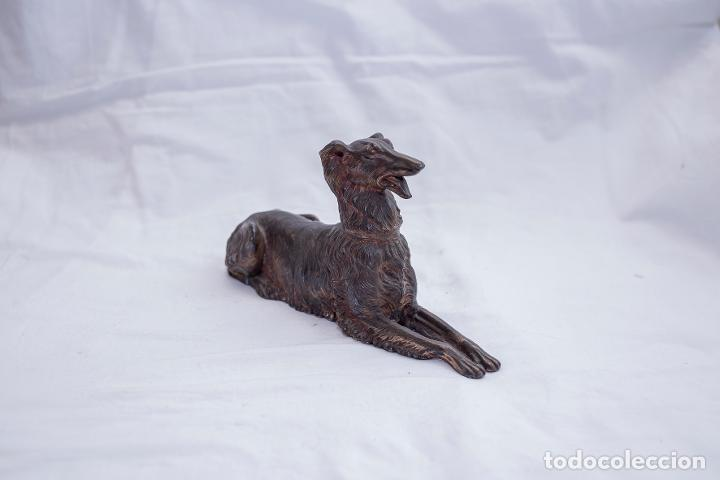 PERRO DE BRONCE (Arte - Escultura - Bronce)