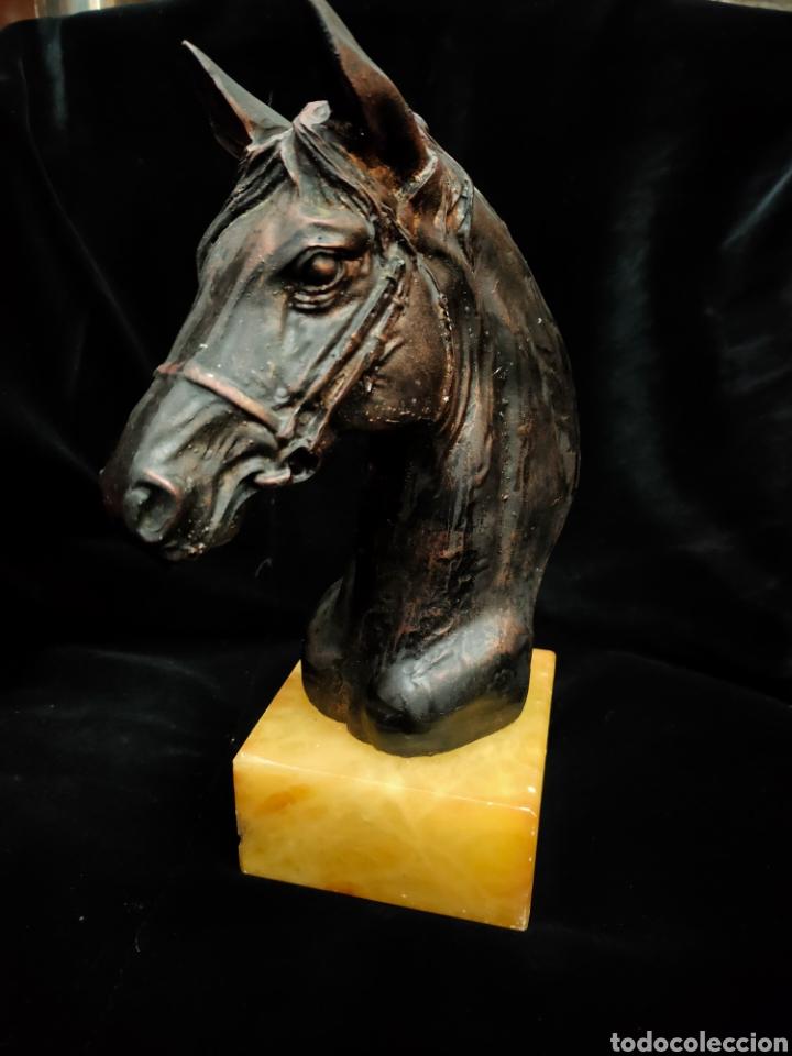 Arte: Escultura busto caballo - Foto 2 - 243974085