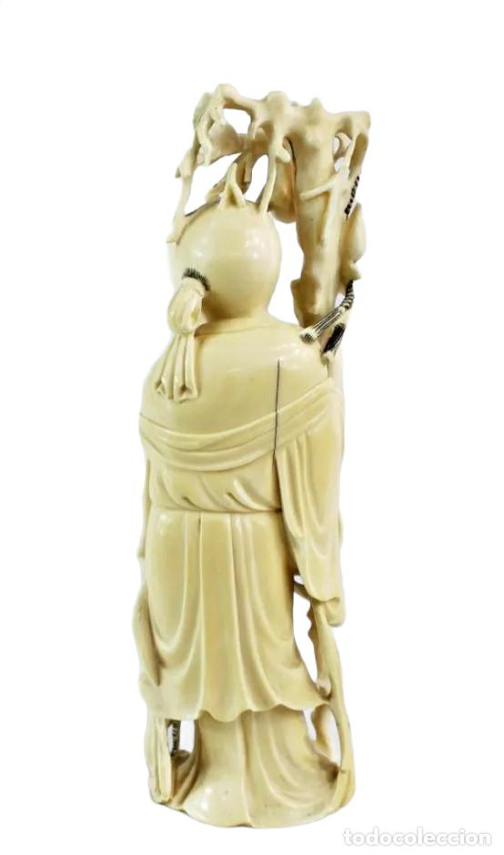 Arte: Talla en marfil con tintura. China ca 1900. Ivory carved and tinted sculpture. Shou Lao - Foto 3 - 247034795