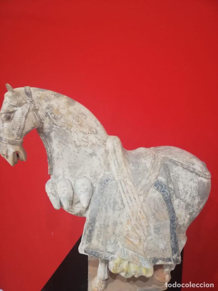 Arte: Caballo chino de terracota - Foto 3 - 259212710