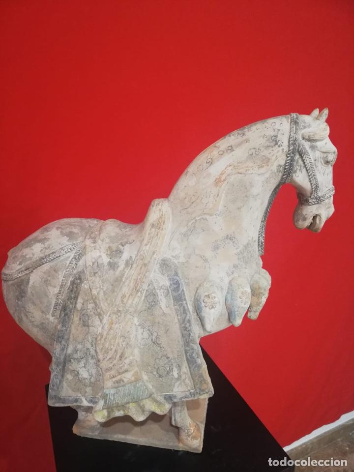 CABALLO CHINO DE TERRACOTA (Arte - Escultura - Terracota )