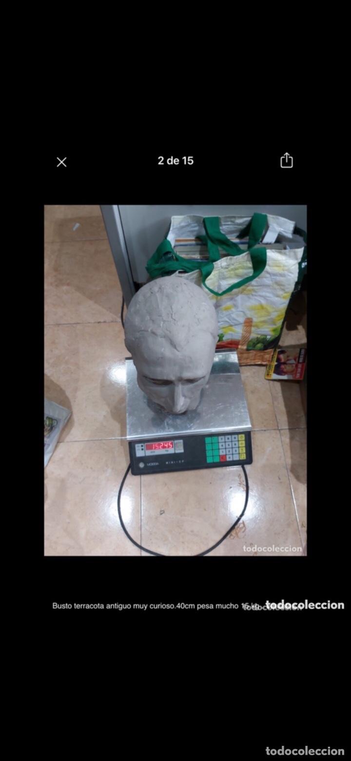 Arte: Busto terracota antiguo muy curioso.40cm pesa mucho 15 kg . Ver fotos - Foto 2 - 263645405