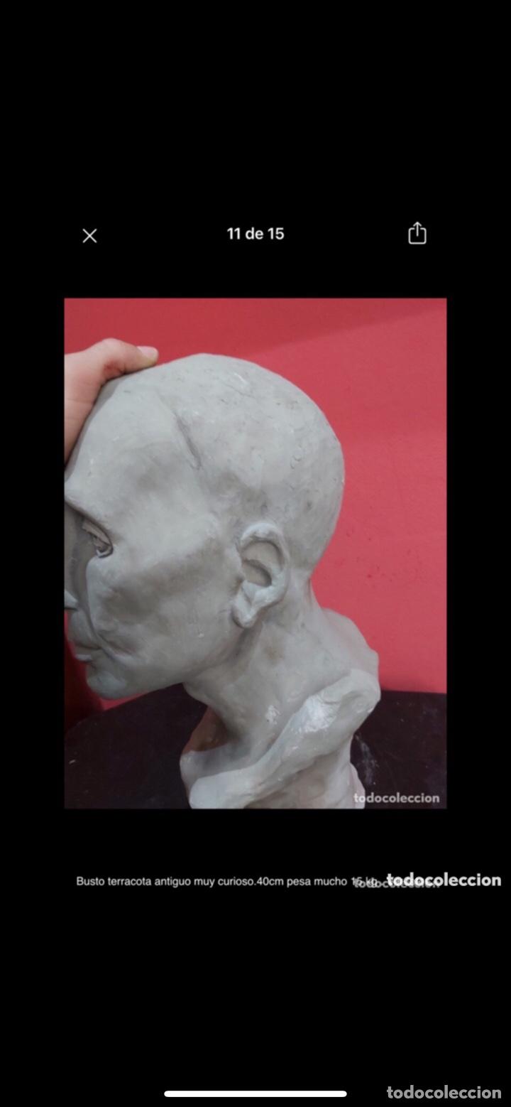 Arte: Busto terracota antiguo muy curioso.40cm pesa mucho 15 kg . Ver fotos - Foto 10 - 263645405