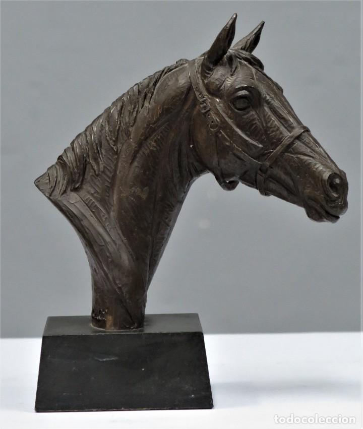 CABALLO. RESINA PATINADA BRONCE. DORIS LINDNER (1896-1979) (Arte - Escultura - Resina)