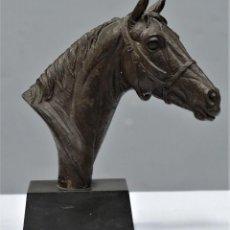 Arte: CABALLO. RESINA PATINADA BRONCE. DORIS LINDNER (1896-1979). Lote 267537574