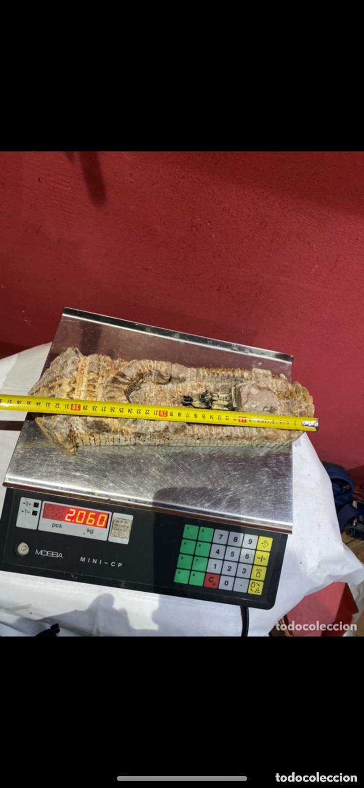 Arte: Curiosa escultura de piedra tallada firmada con figura virgen negra de Monserrat. Ver las fotos - Foto 3 - 271685148