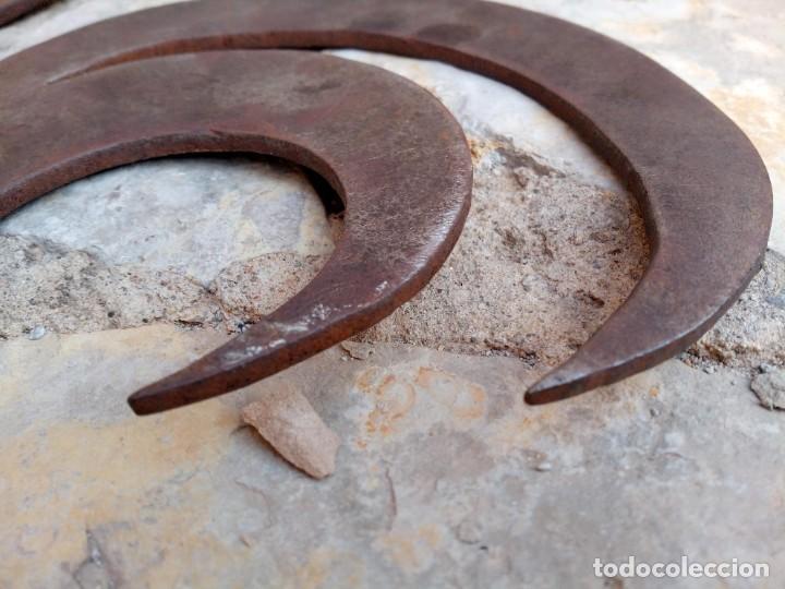 Arte: Gallo galo. Escultura en plancha metálica - Foto 11 - 278383513