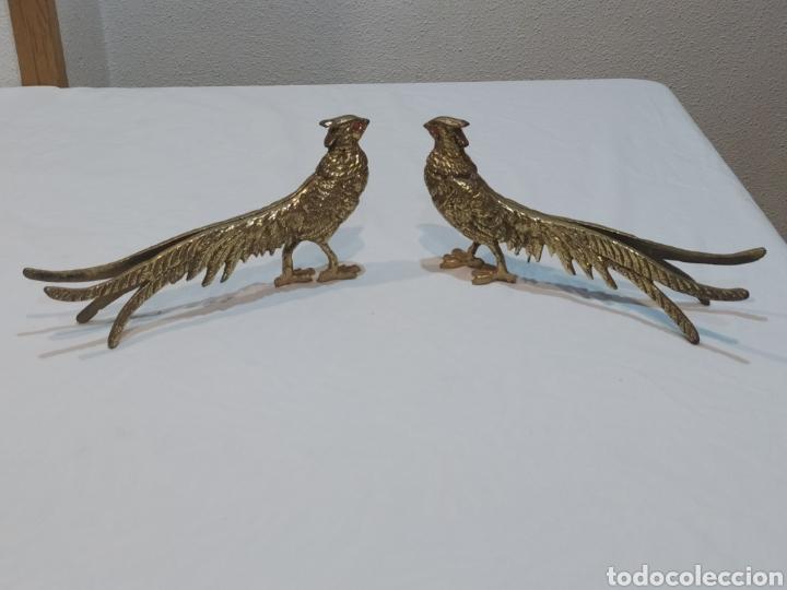 IMPRESIONANTE PAREJA DE PAVOS REALES DE BRONCE ANTIGUOS (Arte - Escultura - Bronce)