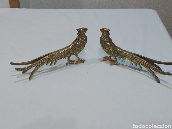 Arte: Impresionante pareja de pavos reales de bronce antiguos - Foto 2 - 287241283