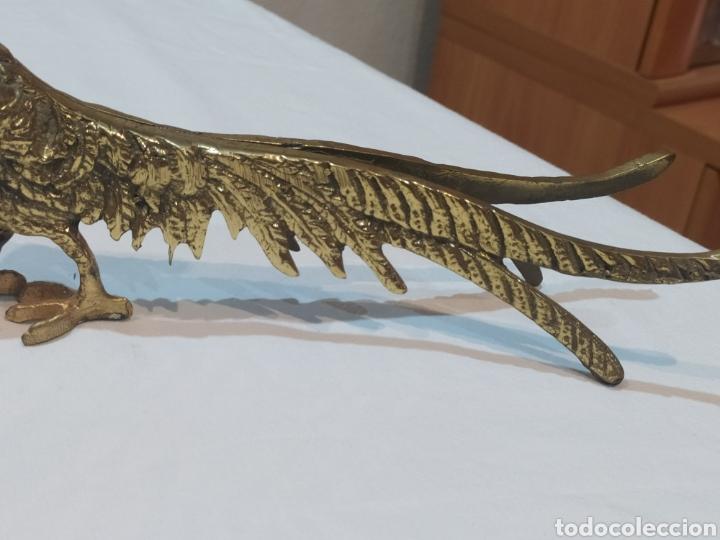 Arte: Impresionante pareja de pavos reales de bronce antiguos - Foto 5 - 287241283