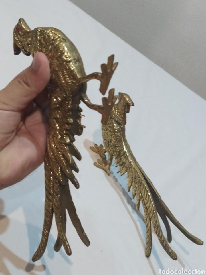 Arte: Impresionante pareja de pavos reales de bronce antiguos - Foto 8 - 287241283
