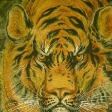 Arte: TORA!!!!! (¡¡¡TIGRE!!!). MAGNÍFICO KAKEMONO JAPONÉS PINTADO A MANO SOBRE SEDA.. Lote 30615953