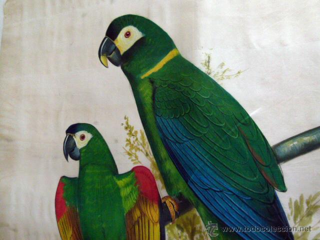 Arte: Pintura original sobre seda natural - Foto 2 - 42797896