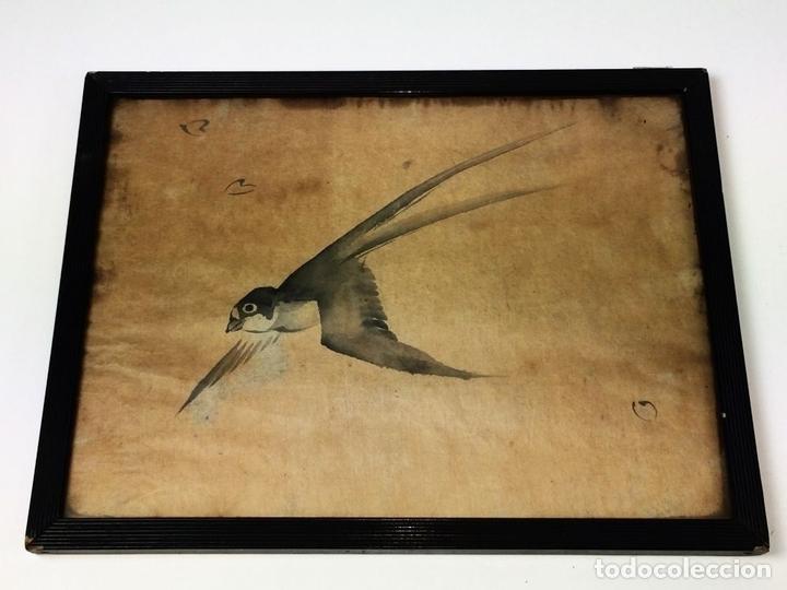 Arte: GOLONDRINA. ACUARELA SOBRE PAPEL. CHINA. SIGLO XIX - Foto 2 - 89563172