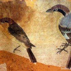 Arte: 2 PÁJAROS PINZONES . DIBUJO Y ACUARELA SOBRE PAPEL. CHINA(?). SIGLO XIX. Lote 89644536