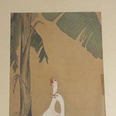 Arte: PATOS. GRABADO SHIN HANGA. OHARA KOSON. PRINCIPIOS S. XX.. Lote 115810695