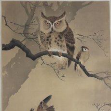 Arte: BÚHO. GRABADO SHIN HANGA. OHARA KOSON. PRINCIPIOS S. XX.. Lote 115817755