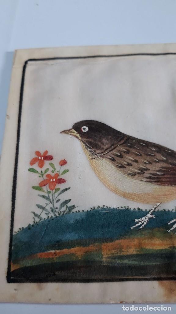 Arte: Dibujo figura aves pájaros tempera o acuarela sobre papel de seda o arroz China, Asia siglo XIX - Foto 2 - 117799115